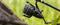 Катушка Shimano Big Baitrunner 14 000 XTB LC - фото 8525
